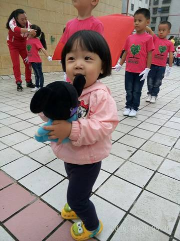 journal_insert_pic_596298654