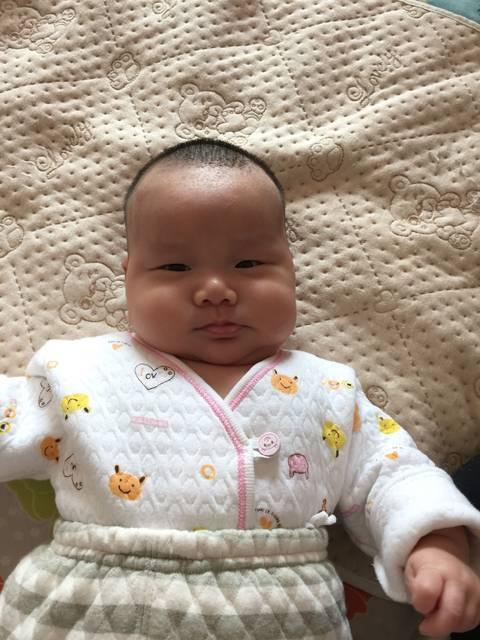 短发全集_宝宝马上,正常?头型就3个月了,是无翼鸟之头型大宝宝图片