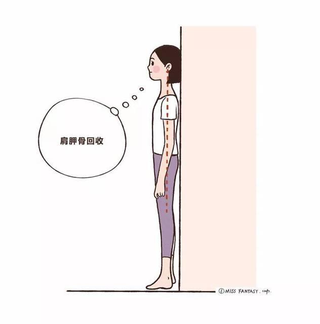 靠墙站减肥,靠墙站减肥姿势,靠墙站减肥法怀瑾减肥说南图片