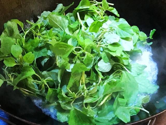 夏天亲子的美食,清热下火上汤巨野菜,你吃过制作美味活动总结常见图片