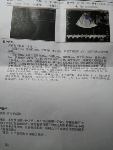 journal_insert_pic_1109731860